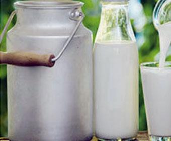 Non-GMO-Pastured-Raw-Milk from Taylor family farm